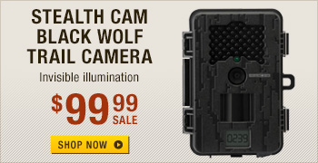 Stealth Cam Black Wolf Trail Camera